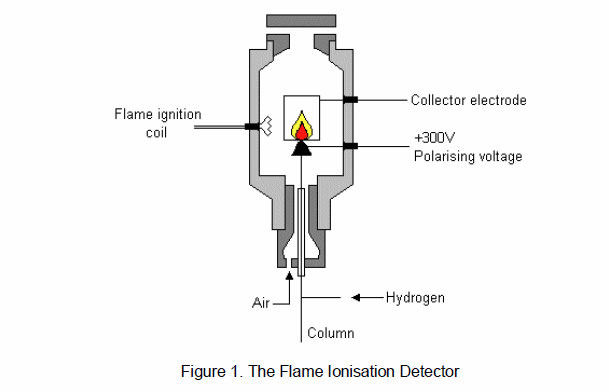 Flame Ionisation Detector