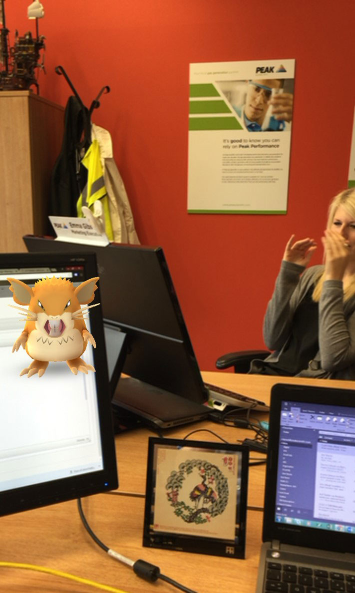 PokemonGo Raticate desk office Peak